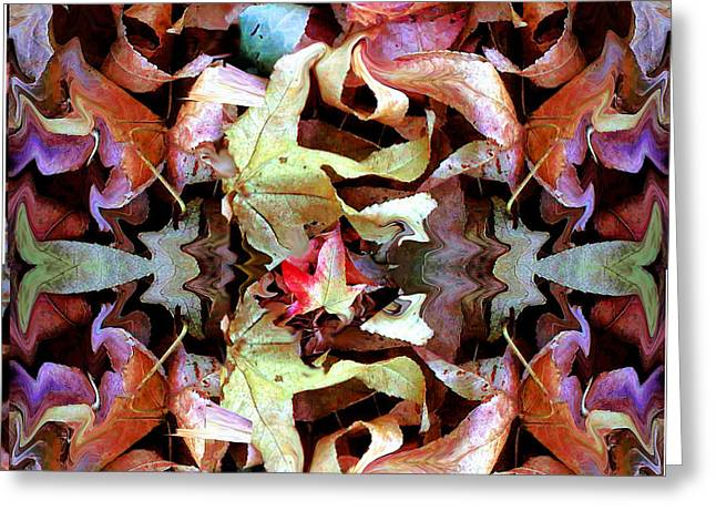 Fall's Perfect Kaliedoscope Greeting Card by Marcy  Orendorff