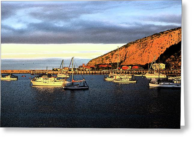 Greeting Card featuring the photograph Last Rays At The Bay by Nareeta Martin