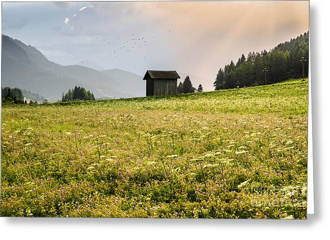 Greeting Card featuring the photograph Last Rays On The Valley by Yuri Santin