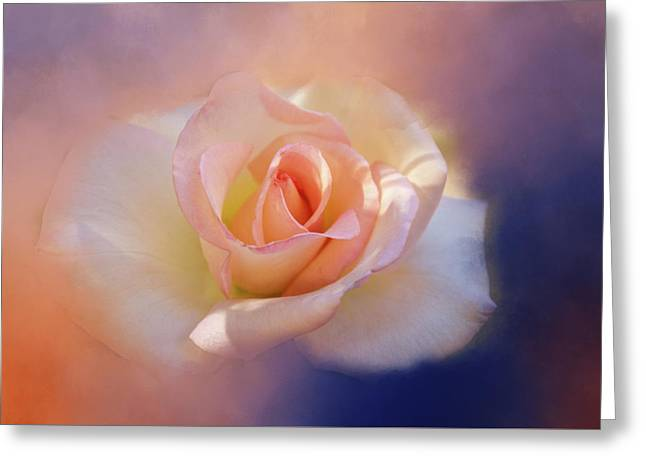 Last Rose Of Summer? Greeting Card