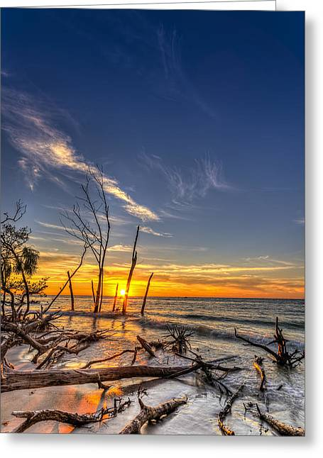 Last Stand Greeting Card by Marvin Spates