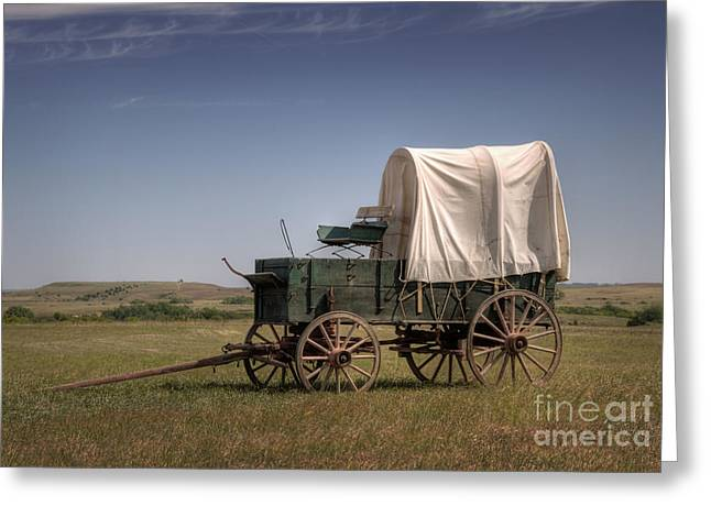 Cattle Drive Photographs Greeting Cards - Last Stop Greeting Card by Fred Lassmann