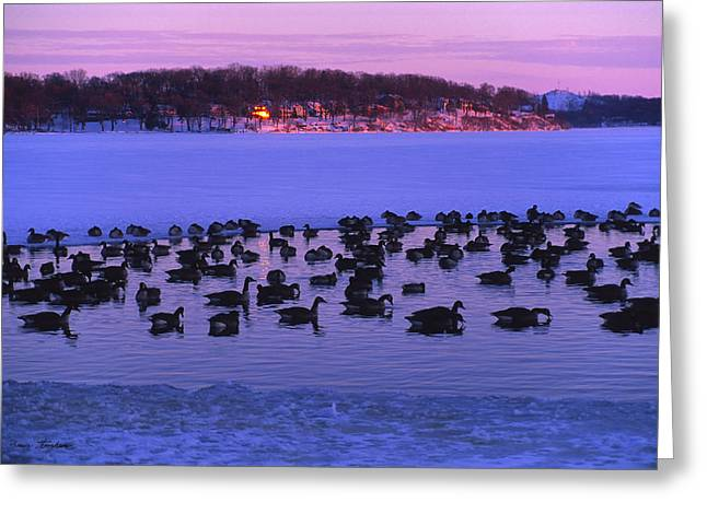 Last To Leave - Lake Geneva Wisconsin Greeting Card
