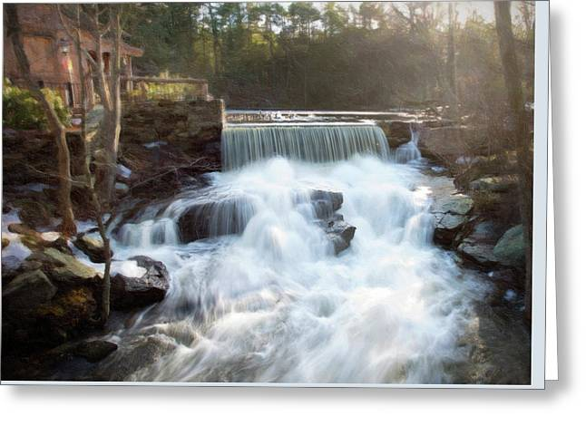 Greeting Card featuring the photograph Late Afternoon At The Duck Pond by Sue Collura