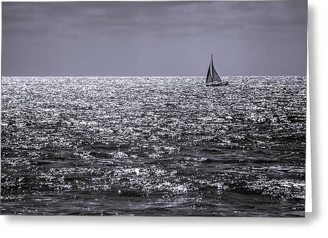 Sailboat Off The Coast At San Diego Greeting Card