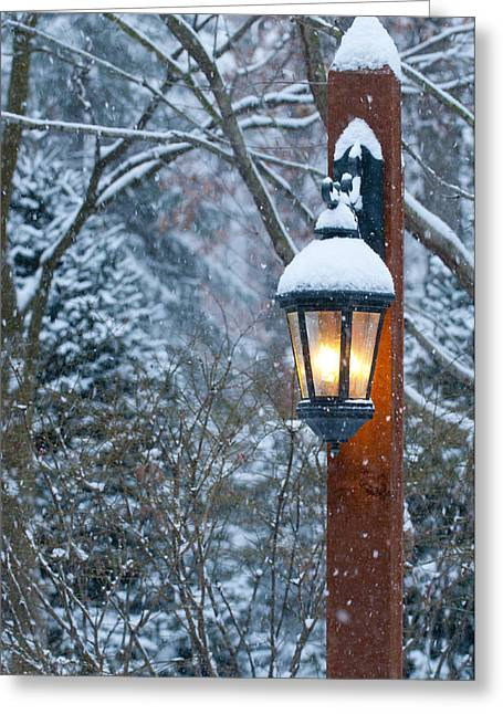 Winterscape Greeting Cards - Late Afternoon Snow Greeting Card by Sandra Bronstein