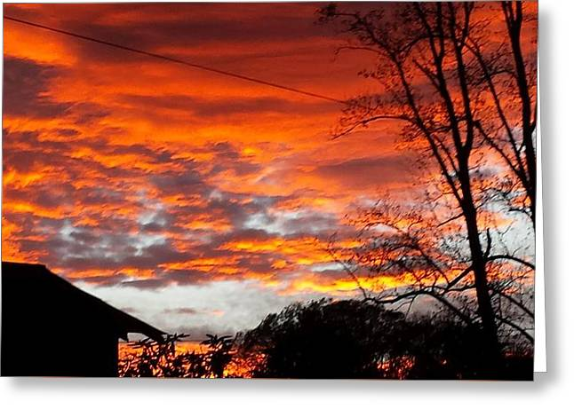 Late Autumn Sunset Greeting Card