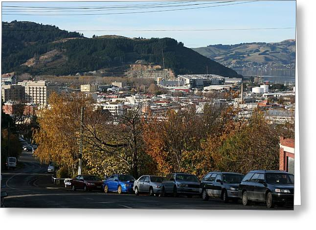 Late Autumn View To North Dunedin Greeting Card