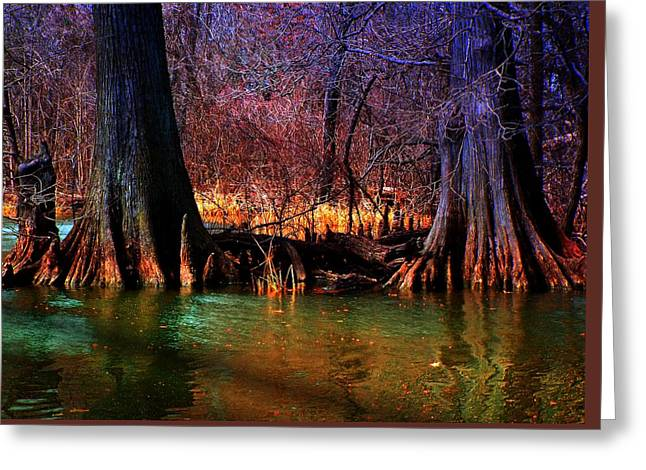 Late Evening In Reelfoot Greeting Card by Julie Dant