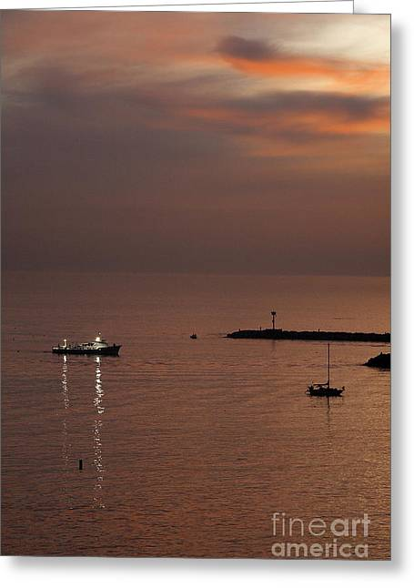 Greeting Card featuring the photograph Late Evening by Viktor Savchenko