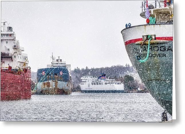 Late Harbour Snow Greeting Card