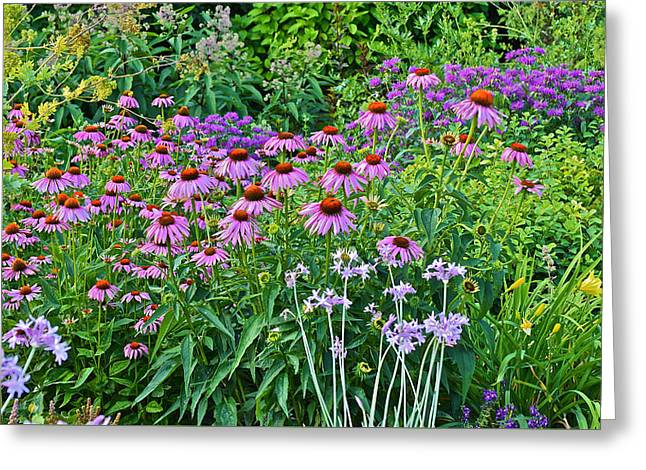 Late July Garden 2 Greeting Card by Janis Nussbaum Senungetuk