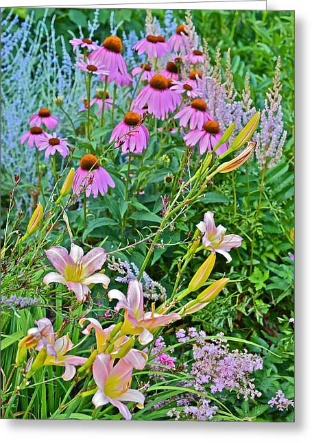 Late July Garden 3 Greeting Card
