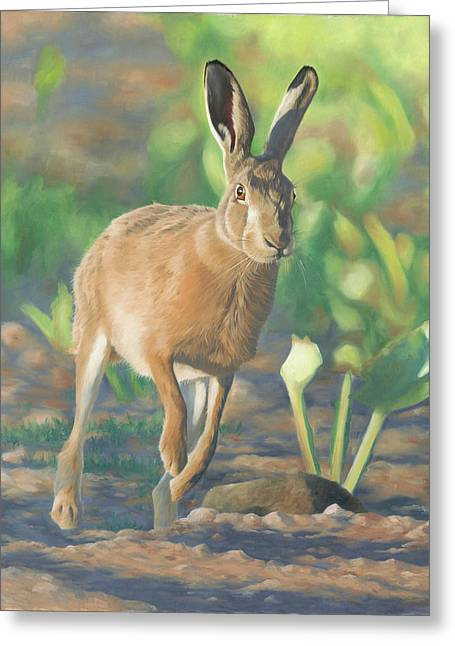 Late Light-hare Greeting Card by Clive Meredith