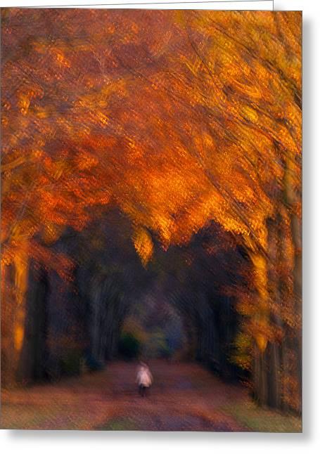 Greeting Card featuring the photograph Late Nature Walk. by Luc Van de Steeg