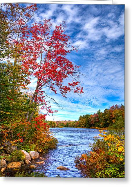 Late September On The Moose River Greeting Card