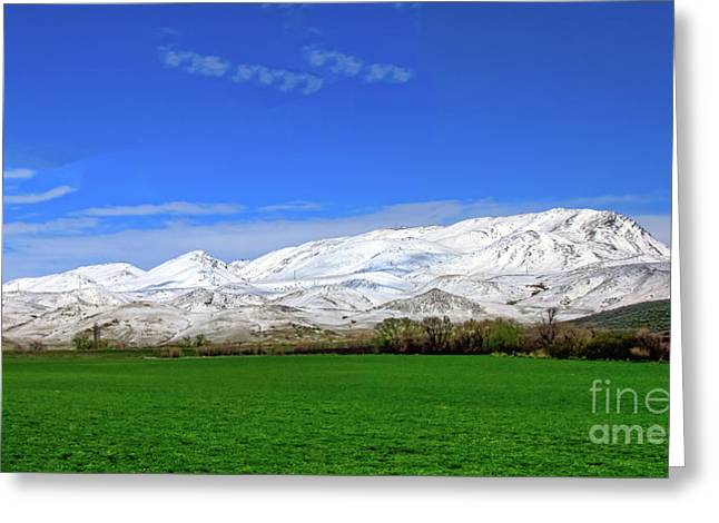 Late Spring View Greeting Card by Robert Bales