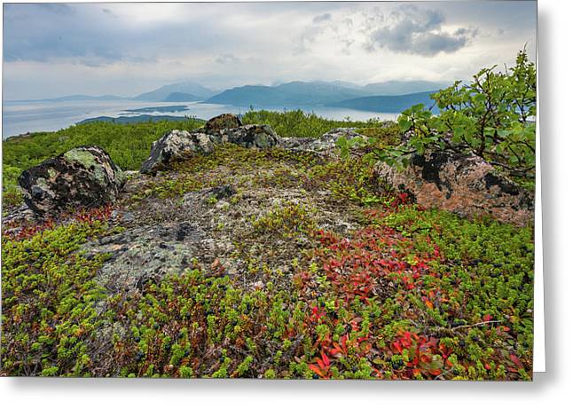 Greeting Card featuring the photograph Late Summer In The North by Maciej Markiewicz