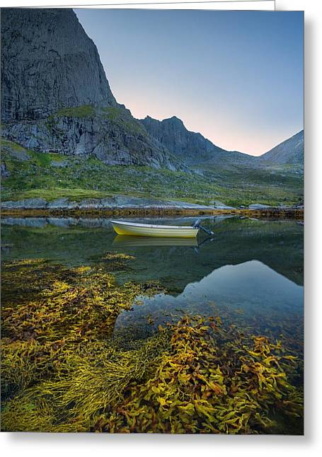 Greeting Card featuring the photograph Late Summer by Maciej Markiewicz