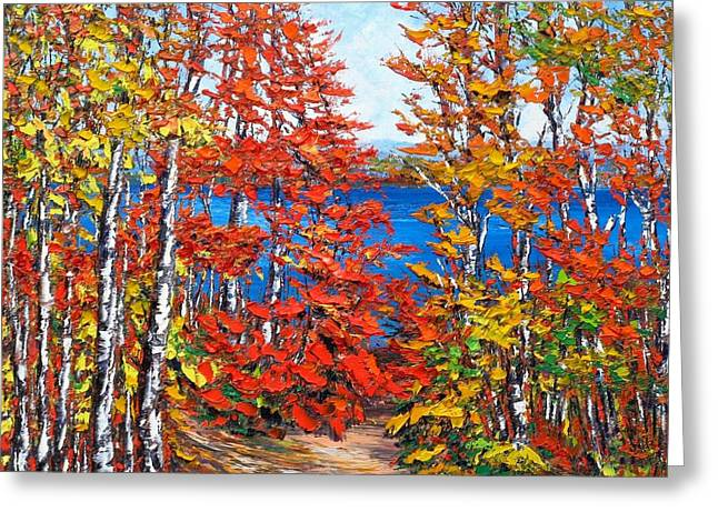 Late Summer Ottawa River Greeting Card by Margaret Chwialkowska
