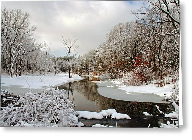 Late Winter Storm Greeting Card