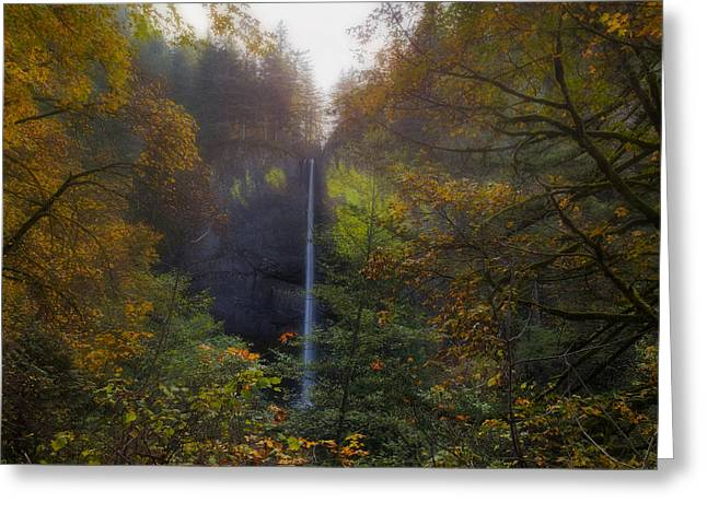 Latourell Falls In Autumn Greeting Card by David Gn