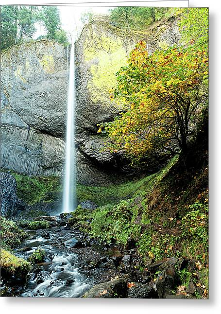 Latourell Falls Greeting Card
