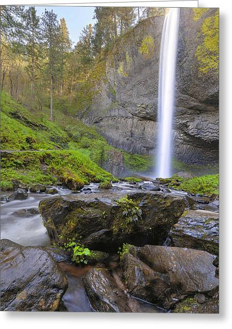 Latourell Falls Sunset Greeting Card by David Gn