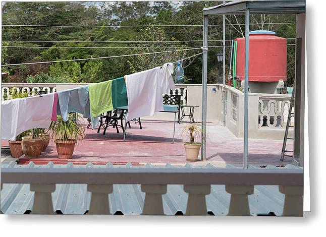 Laundry At The Bay Greeting Card by Sharon Popek