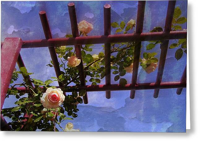 Laura's Rose Trellis 2 Greeting Card by Jen White