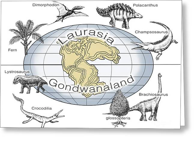 Laurasia And Gondwana, Illustration Greeting Card by Spencer Sutton