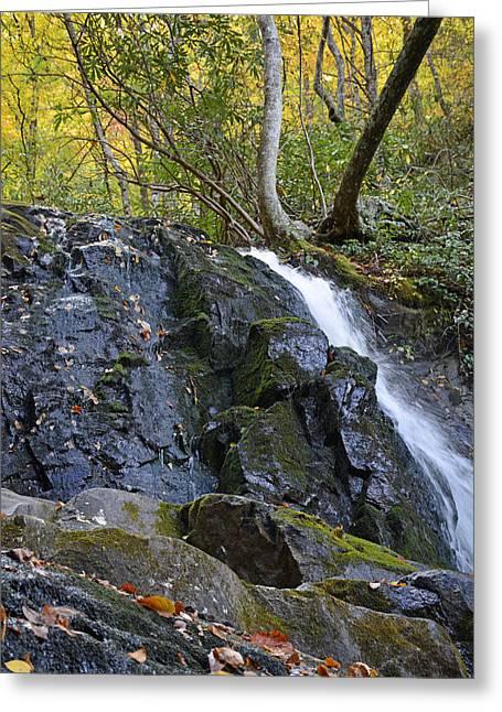 Laurel Falls Great Smoky Mountains National Park Greeting Card