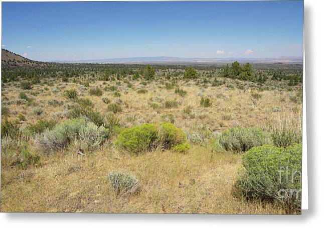 Lava Beds National Monument California Dsc5317 Panorama Greeting Card