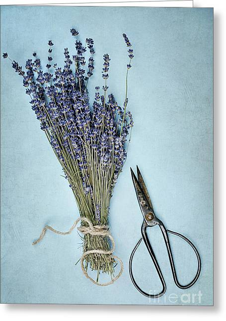 Greeting Card featuring the photograph Lavender And Antique Scissors by Stephanie Frey