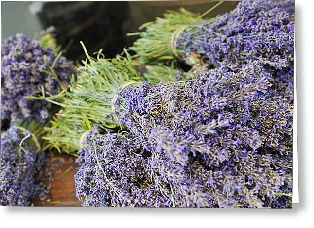 Azur Greeting Cards - Lavender bouquets on table Greeting Card by Sami Sarkis