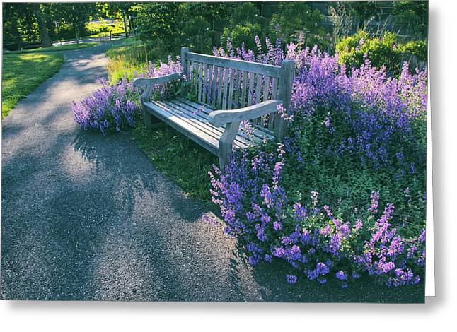 Lavender Delight Greeting Card