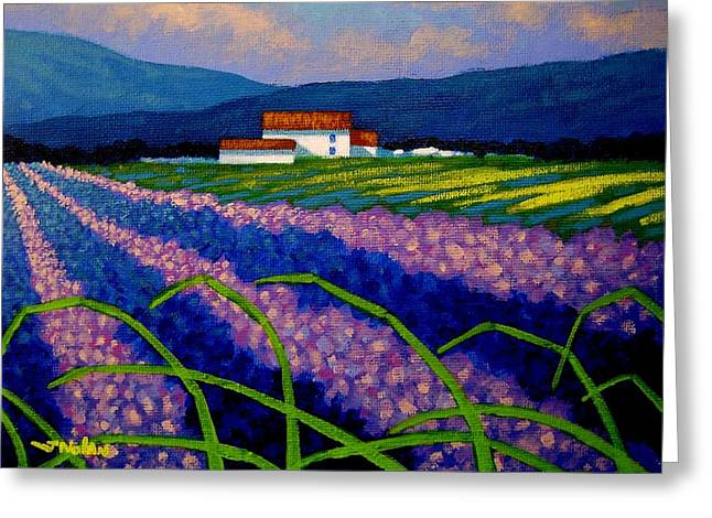 Lavender Field France Greeting Card by John  Nolan