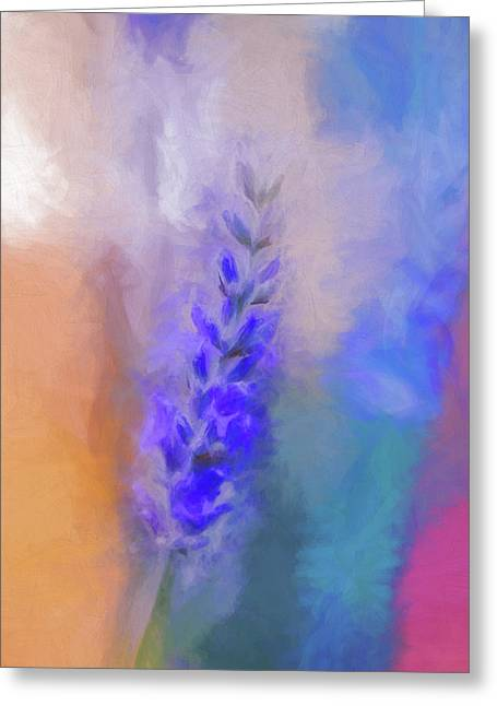 Lavender Flare Greeting Card by Terry Davis
