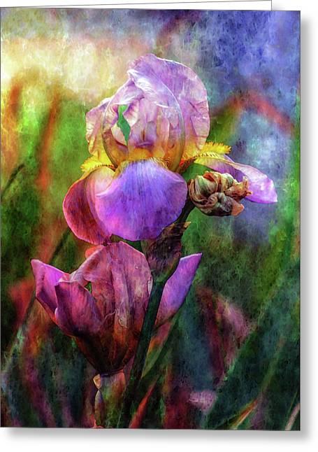 Lavender Iris Impression 0056 Idp_2 Greeting Card