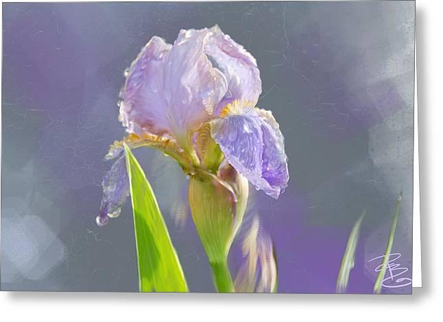 Lavender Iris In The Morning Sun Greeting Card