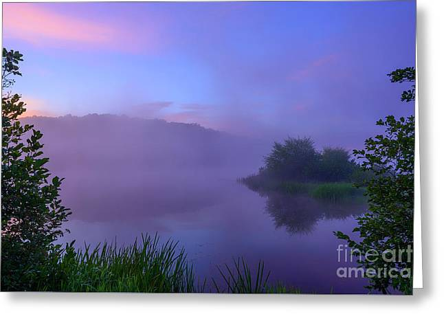 Lavender Mist Summer Morning  Greeting Card