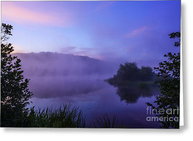 Lavender Mist Greeting Card
