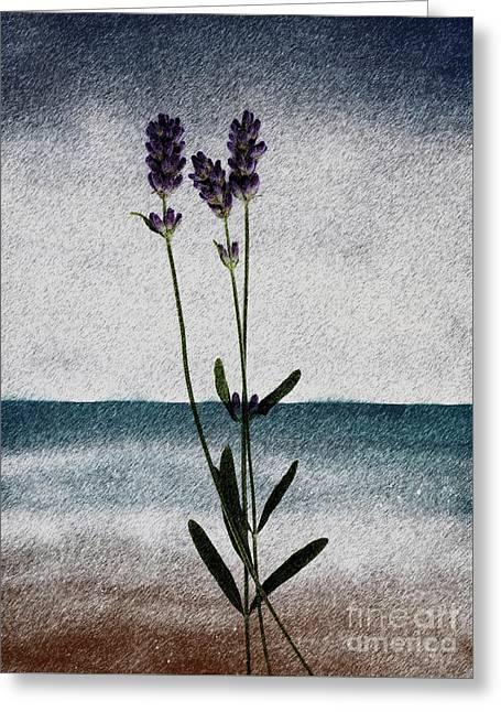 Lavender Ocean Breath Greeting Card