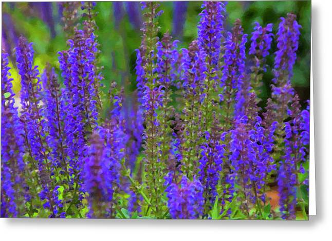 Greeting Card featuring the digital art Lavender Patch by Chris Flees
