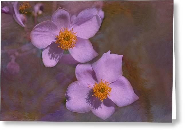 Lavender Petals Greeting Card
