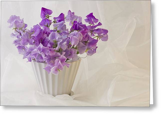 Lavender Sweet Peas And Chiffon Greeting Card by Sandra Foster