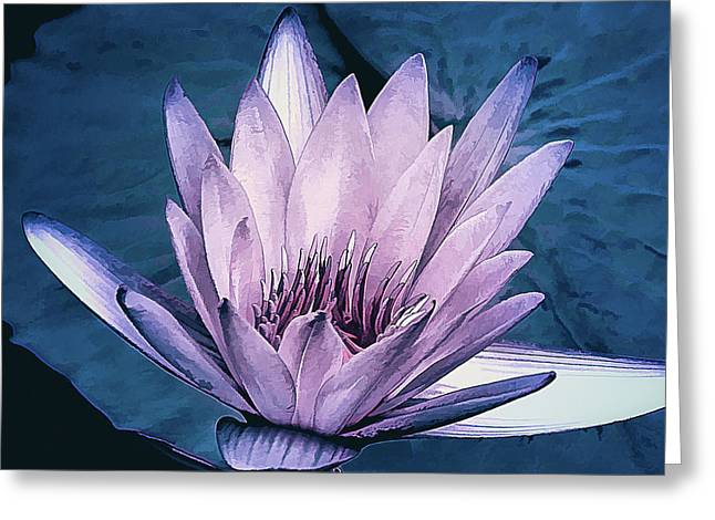Greeting Card featuring the photograph Lavender Water Lily  by Julie Palencia