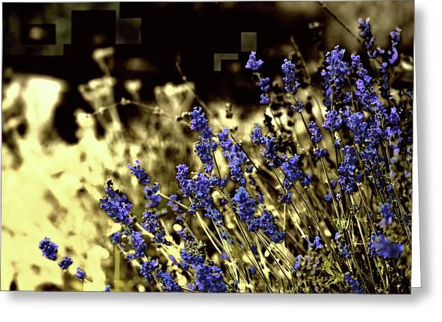 Lavender Yellow Greeting Card