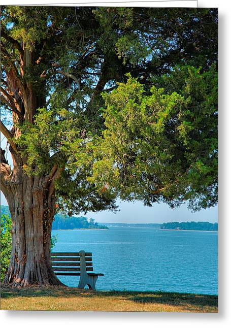 Lawn With A View Greeting Card by Steven Ainsworth
