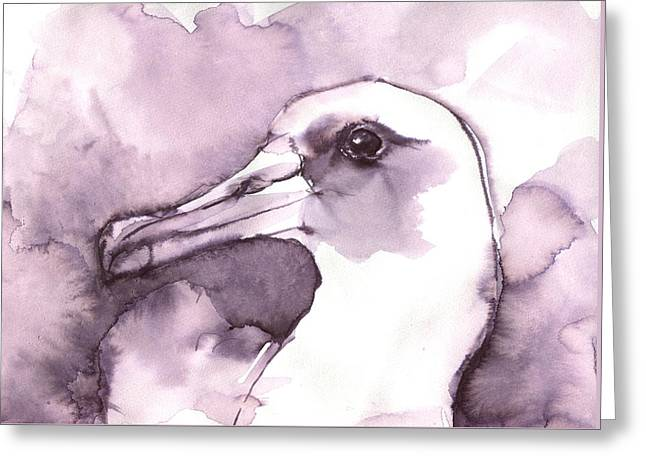 Laysan Albatross Greeting Card